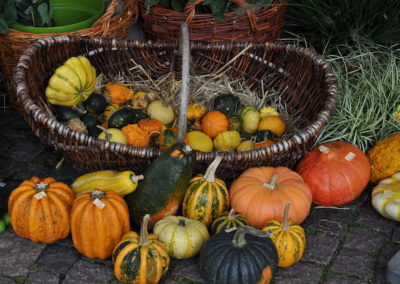 Herbstfest Korschenbroich - mocotel war auch 2017 dabei_DSC_0900